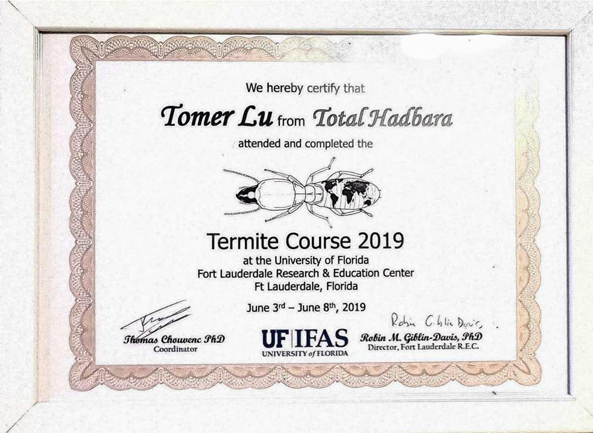 טוטאל הדברה | הכשרה מאוניברסיטת פלוריה - טרמיטים